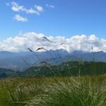 panorama della Apuane dal Bocca di Scala 1