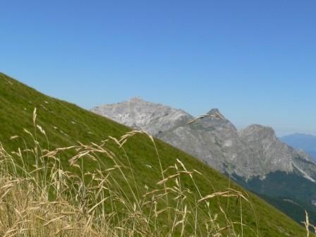 Tambura, Pisanino (top delle Apuane) e Roccandagia