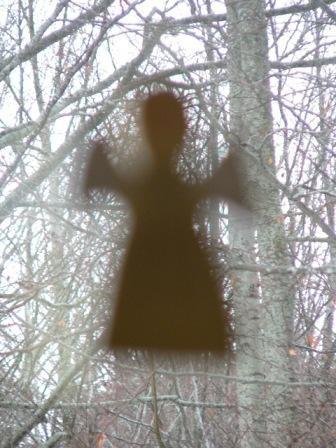 l'ombra di un angioletto contro i faggi
